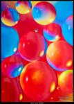 Oil on Water Bubbles