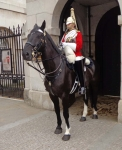 08-GP-horse guard on duty